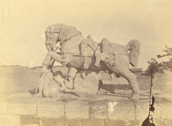 Statue of one of the two horses near the ashvadavara, Surya Temple or Black Pagoda, Konarka 1003358